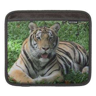 Funda Para iPad Tigre anaranjado