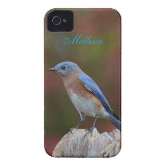 Funda Para iPhone 4 Bluebird impresionante