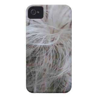 Funda Para iPhone 4 Cactus del viejo hombre