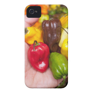 Funda Para iPhone 4 Cosechas calientes