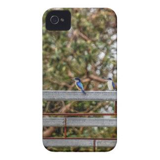 FUNDA PARA iPhone 4 DE Case-Mate EFECTOS AZULES DEL ARTE DE QUEENSLAND AUSTRALIA