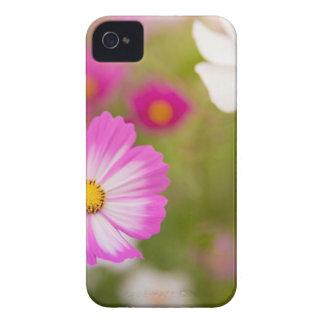 Funda Para iPhone 4 De Case-Mate Flor asiática