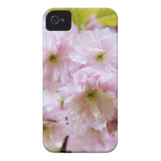 Funda Para iPhone 4 De Case-Mate Flores rosadas en cerezo japonés en la ciudad