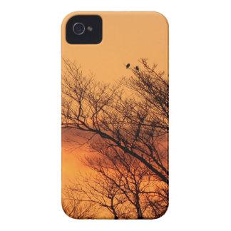 Funda Para iPhone 4 De Case-Mate Observación de la salida del sol