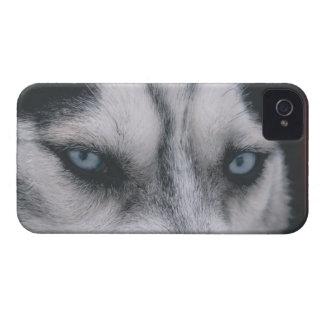 Funda Para iPhone 4 De Case-Mate Ojos fornidos