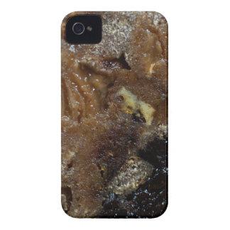 Funda Para iPhone 4 De Case-Mate Pan alemán de la fruta
