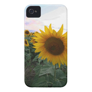 Funda Para iPhone 4 De Case-Mate Primer del girasol