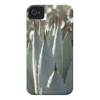 Funda Para iPhone 4 De Case-Mate Puntos del agavo