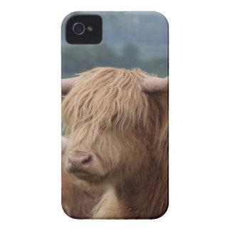 Funda Para iPhone 4 De Case-Mate retrato del ganado de la montaña