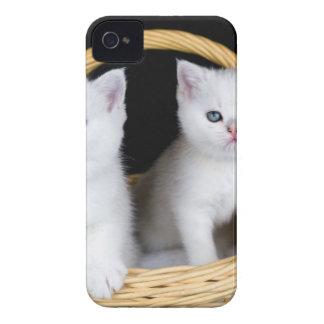 Funda Para iPhone 4 Dos gatitos blancos en cesta en background.JP