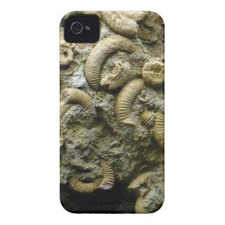 Funda Para iPhone 4 fósiles encajados de los caracoles