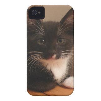Funda Para iPhone 4 Gatito blanco y negro dulce que le mira