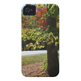 Funda Para iPhone 4 Hojas de otoño en Maine