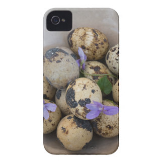 Funda Para iPhone 4 Huevos de codornices y flores 7533