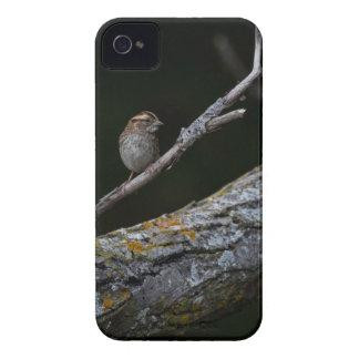Funda Para iPhone 4 Pequeño pájaro