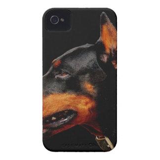 Funda Para iPhone 4 Perro casero del Doberman