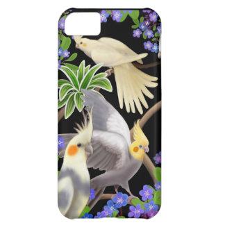 Funda Para iPhone 5C Cockatiels en caso del iPhone de las nomeolvides