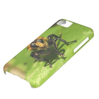 Funda Para iPhone 5C Mosca de ladrón