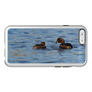Funda Para iPhone 6 Plus Incipio Feather Shine Pequeño Grebe y polluelo