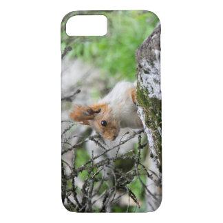 Funda Para iPhone 8/7 Encontrar ardillas en Kirguistán: Foto animal