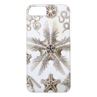 Funda Para iPhone 8/7 Estrellas frágiles de Ernst Haeckel Ophiodea