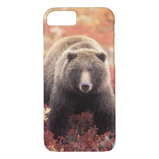 Funda Para iPhone 8/7 Los E.E.U.U., Alaska, Denali NP, oso grizzly