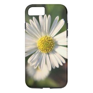 Funda Para iPhone 8/7 Margarita miniatura soleada en primer