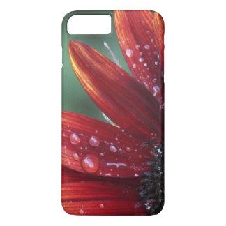 Funda Para iPhone 8 Plus/7 Plus Descensos rojos de los pétalos y de la lluvia del