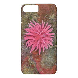 Funda Para iPhone 8 Plus/7 Plus Hopkins subió el caso del iPhone de Nudibranch