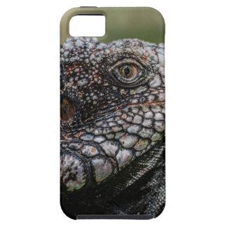 Funda Para iPhone SE/5/5s 1920px-Iguanidae_head_from_Venezuela