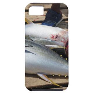 Funda Para iPhone SE/5/5s atún amarillo de las aletas