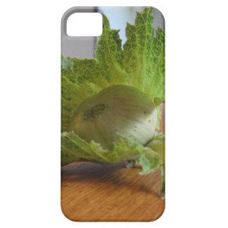 Funda Para iPhone SE/5/5s Avellanas verdes frescas en una tabla de madera