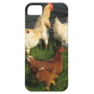 Funda Para iPhone SE/5/5s Aves de corral