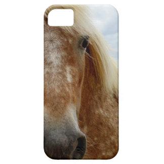 Funda Para iPhone SE/5/5s Azucare el caballo del Appaloosa, _