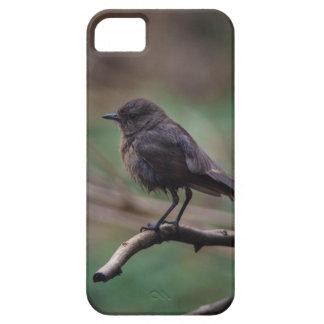 Funda Para iPhone SE/5/5s Belleza del pájaro