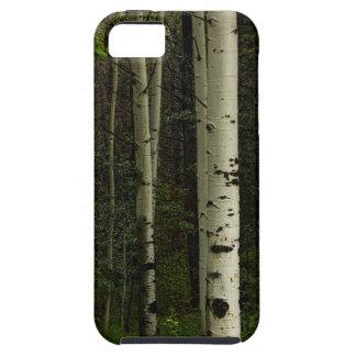 Funda Para iPhone SE/5/5s Bosque blanco