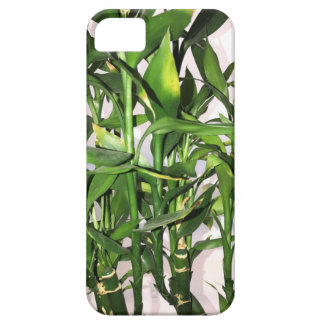 Funda Para iPhone SE/5/5s Brotes y hojas verdes de bambú