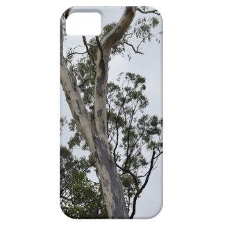 FUNDA PARA iPhone SE/5/5s BUSH AUSTRALIANO QUEENSLAND AUSTRALIA