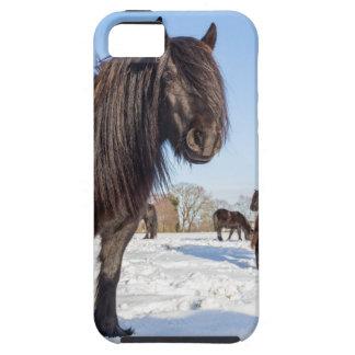 Funda Para iPhone SE/5/5s Caballos negros del frisian en nieve del invierno