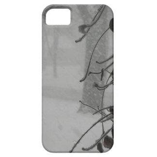 Funda Para iPhone SE/5/5s Caída del Clematis y de la nieve durante una