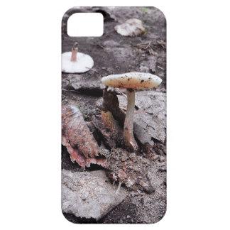 Funda Para iPhone SE/5/5s Caja del teléfono celular de la seta y de las