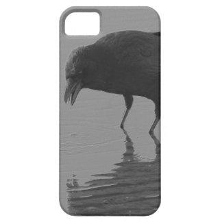 Funda Para iPhone SE/5/5s Caja del teléfono del cuervo de Edgar Allan