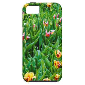 Funda Para iPhone SE/5/5s Campo con los tulipanes rosados y amarillos