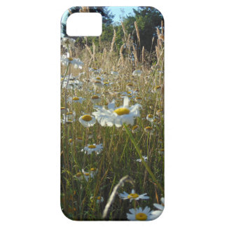 Funda Para iPhone SE/5/5s Campo de margaritas