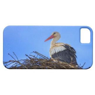 Funda Para iPhone SE/5/5s Cigüeña blanca europea, ciconia, en la jerarquía