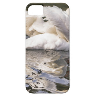 Funda Para iPhone SE/5/5s Cisne tímido