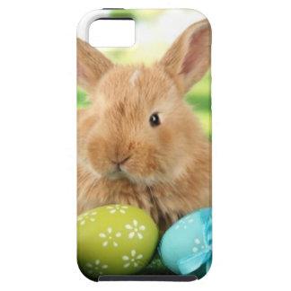 Funda Para iPhone SE/5/5s Conejo de conejito