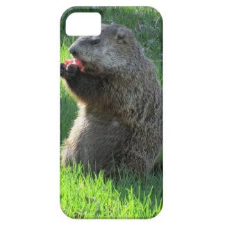 Funda Para iPhone SE/5/5s Consumición de Groundhog