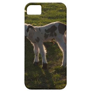 Funda Para iPhone SE/5/5s Cordero recién nacido