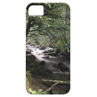 Funda Para iPhone SE/5/5s Corriente irlandesa